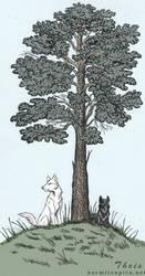 Pinewood by HarmlessDevil