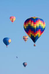 Balloon Fiesta - Albuquerque, NM, USA by nullforce