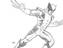 Wolverine by MikeDimayuga
