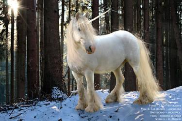 Unicorn Attempt by xkatalyst33x