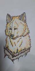 Inktober graphics WIP Autumn Wolf  by KaigoDemon
