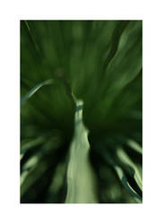 Spine by MichaelJackson-Rand