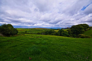 Exmoor Green by adamlack
