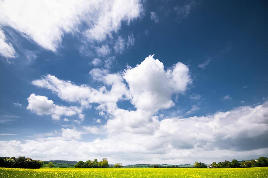 Summer Sky by adamlack