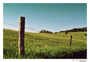 Summer fields (old photo) by LuciusThePope