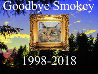 Goodbye Smokey by Garrison-Kelly