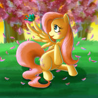 Fluttershy in the Evening by kcday