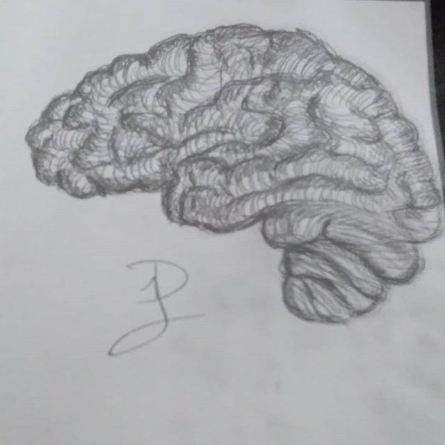 Brain-sketch (ver.2) by Keksoe666