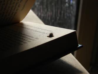 Bookworm 1 by k2op
