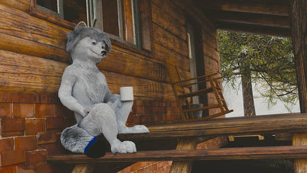 Chillin fox by Shunaka