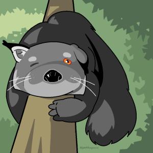 NightMongoose's Profile Picture