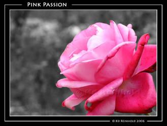 Pink Passion by xxraptus-regaliterxx