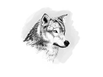Wolf by sildude