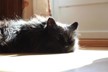 Sunbathing by eventyr