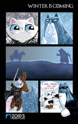 Winter is Coming. Zoid's Funny Cats Special! by KingZoidLord