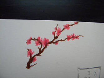 Cherry Blossoms by Kittifizz