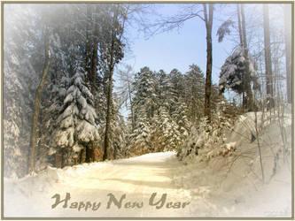 HAPPY NEW YEAR by Escara40