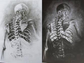 Skeletal by GatoDelCielo