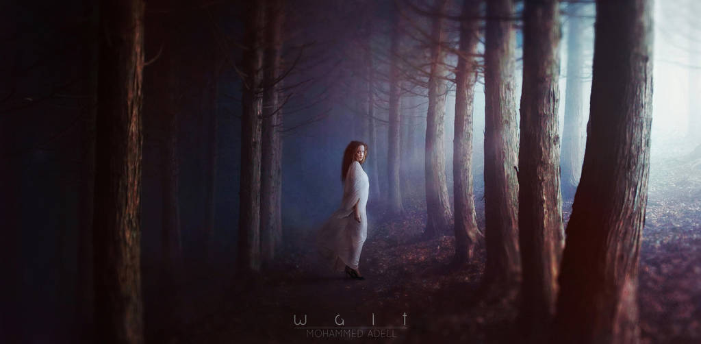 WAIT by nakorabi