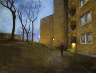 Twilight Backyard by jhgronqvist