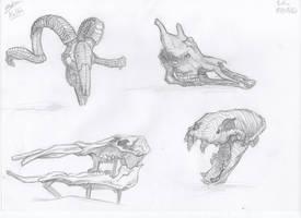 Skulls by Kaldrinn