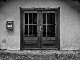 The Door no5 by Bas-Celik