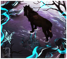 dont lose sight of yourself | WoLF by Copperhaven