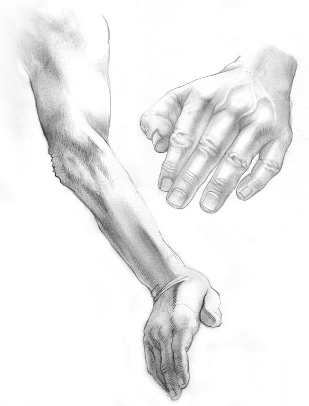 A study of hands by kordal