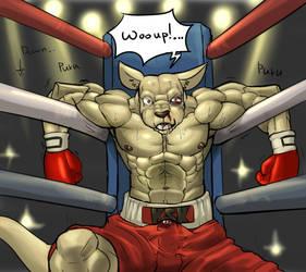 gut punching kangaroo by koreanhusky