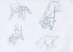 Anatomy- Hands 1 by Uchiha-Harumi