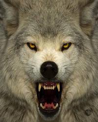 Mad Wolf by nikontom