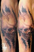 skull by drksoul666