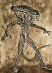 Alien by nmarquez72
