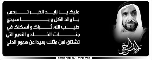 Al-Shaikh Zayed by madpsd