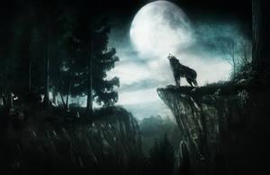 Lonely Wolf by Silvana-Massa-Art