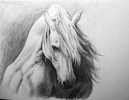 horse by BabysGotATemper