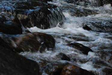 El River by SebSil