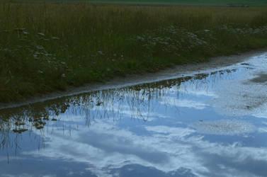 reflection by blackcatsshoot