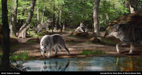 Down River: Wolves at Riverbank by Enthing