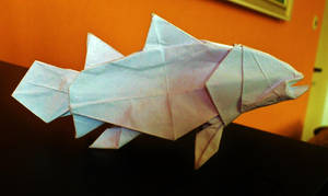 Simple coelacanth by PeteriDish
