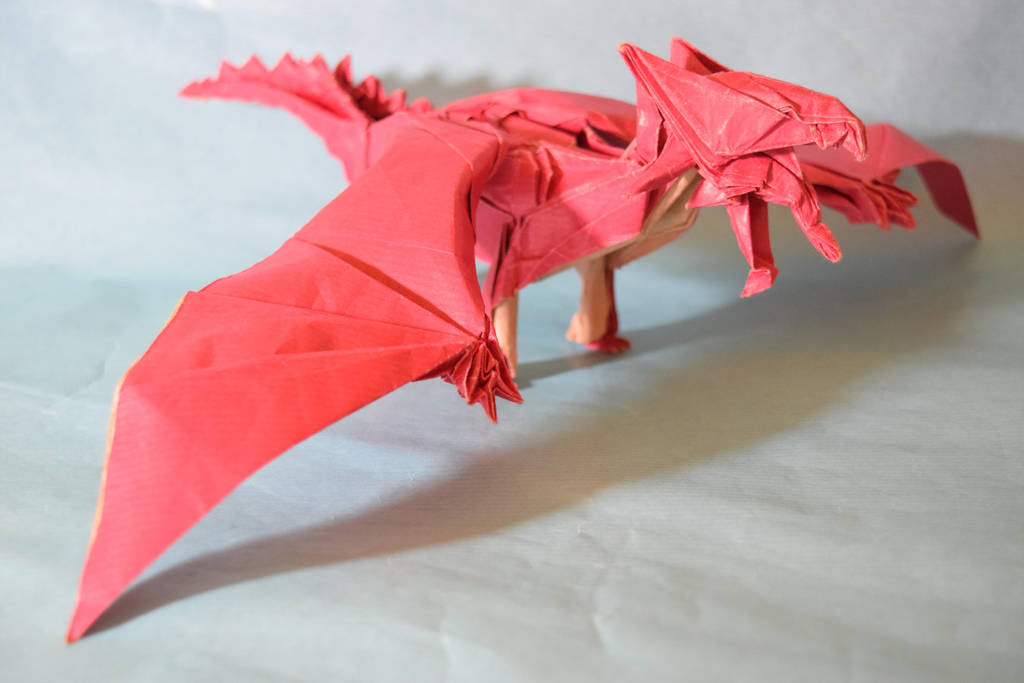 dragon test fold by PeteriDish