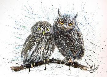 little owl's by KONSTANTIN737