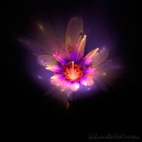 Petals by luisbc