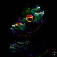 Flower by luisbc