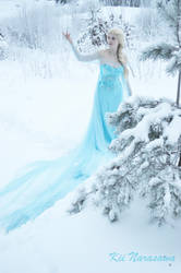 May the snow cover it all by KiiNarasawa