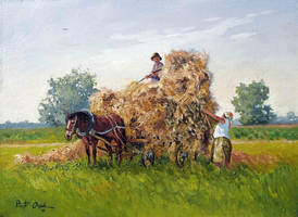 hay harvest by Dreamnr9
