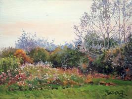 Meadow 7 by Dreamnr9
