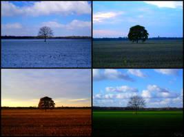 Les saisons passent mais... by 9-NiNe-9