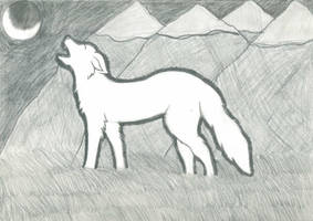 Wolf at Night by Elin-Darling