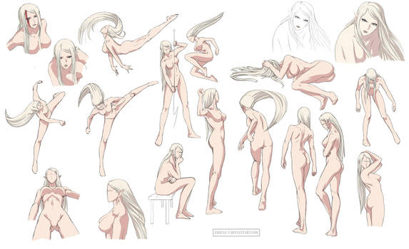 Female anatomy 6 Colored by Precia-T